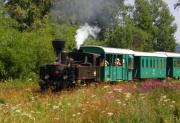 lokomotiva_1.jpg